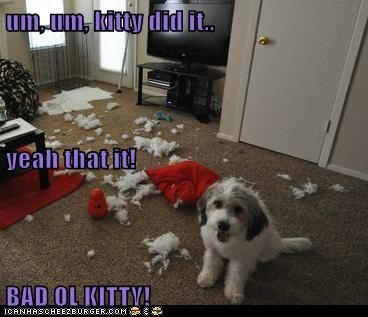 um, um, kitty did it.. yeah that it! BAD OL KITTY!