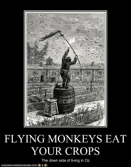 FLYING MONKEYS EAT YOUR CROPS