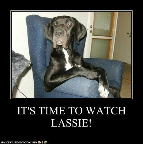 IT'S TIME TO WATCH LASSIE!