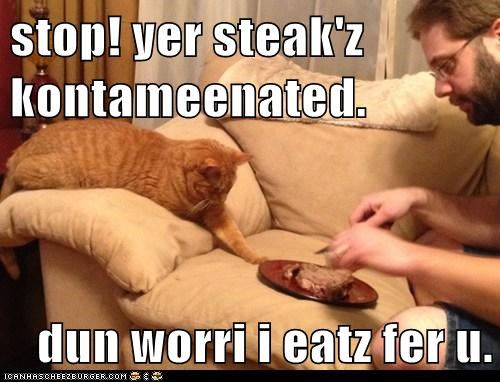 stop! yer steak'z kontameenated.