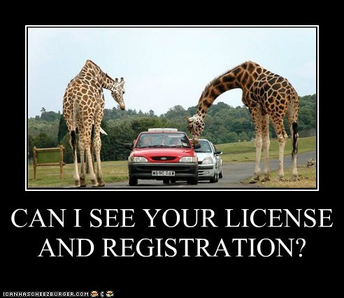 CAN I SEE YOUR LICENSE AND REGISTRATION?