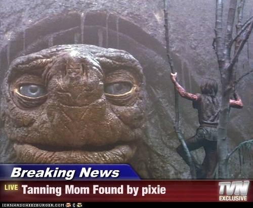 giant,morla,neverending story,news,pixie,swamp,tanning mom,tortoise