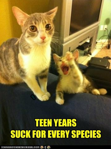 TEEN YEARS SUCK