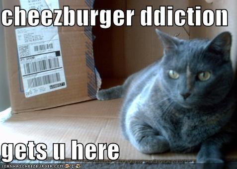 cheezburger ddiction  gets u here