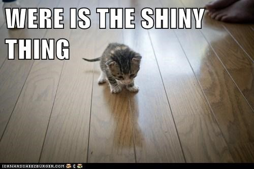 WERE IS THE SHINY THING