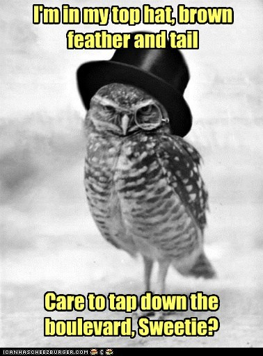 We'll be an 'owling success!