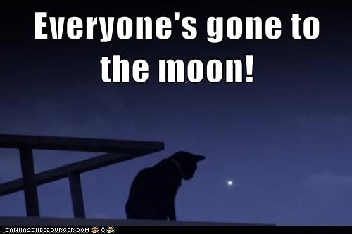 Everyone's gone to the moon!