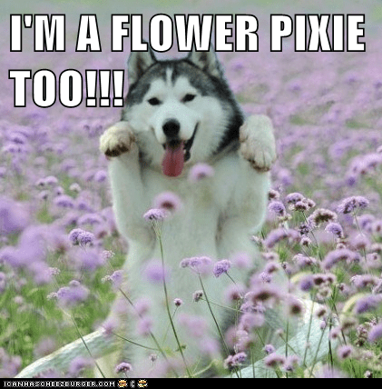 I'M A FLOWER PIXIE TOO!!!
