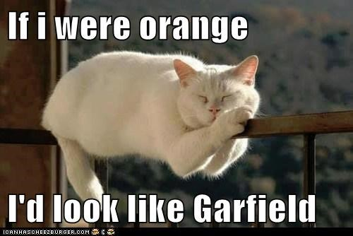 If i were orange  I'd look like Garfield