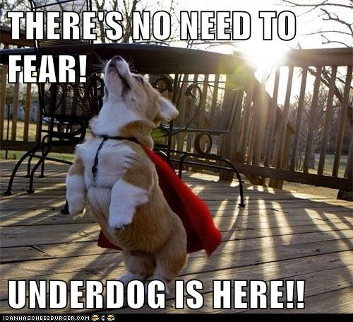 THERE'S NO NEED TO FEAR!  UNDERDOG IS HERE!!