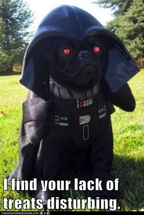 I find your lack of treats disturbing.