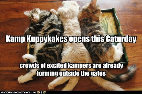 Kamp Kuppykakes opens this Caturday