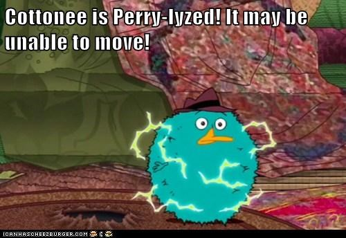 Cottonee is Perry-lyzed! It may be unable to move!
