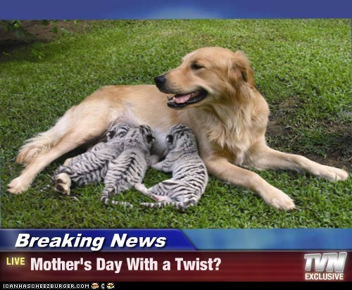 Breaking News - Mother's Day With a Twist?