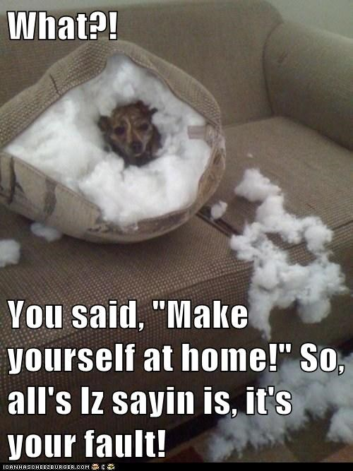 "What?!  You said, ""Make yourself at home!"" So, all's Iz sayin is, it's your fault!"