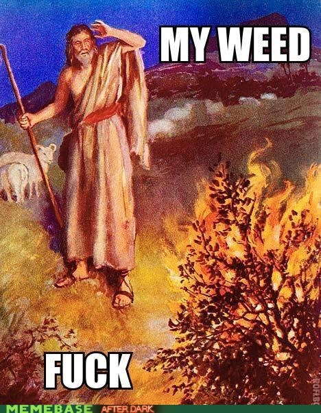 Jesus is trolling again