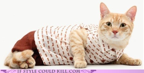 If Style Could Kill: Kitties United!