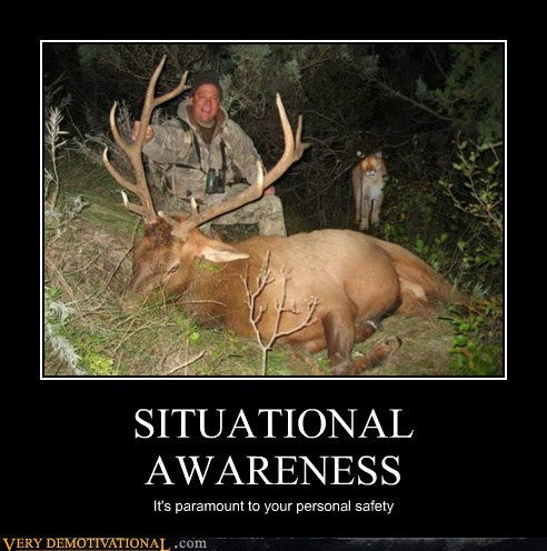 cougar,hilarious,hunter,safety,situational awareness