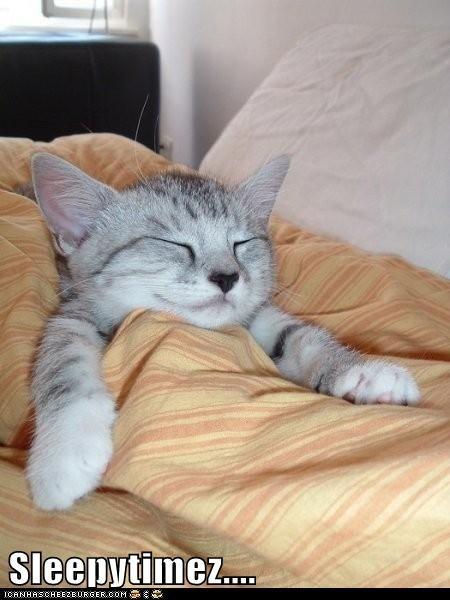 Sleepytimez....