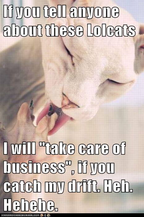 "If you tell anyone about these Lolcats  I will ""take care of business"", if you catch my drift. Heh. Hehehe."