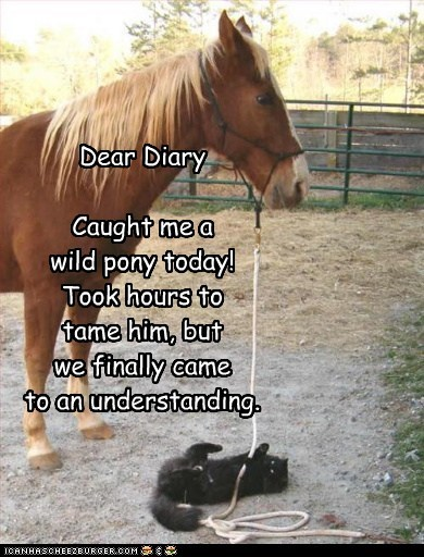 Dear Diary  Caught me a  wild pony today!  Took hours to tame him, but  we finally came  to an understanding.