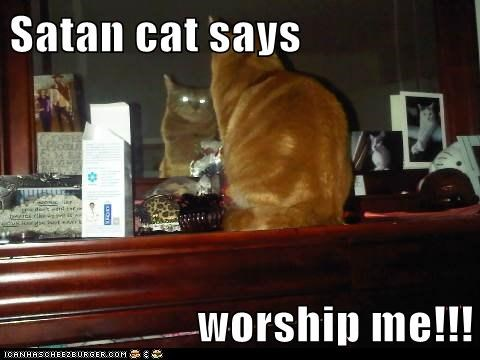 Satan cat says  worship me!!!