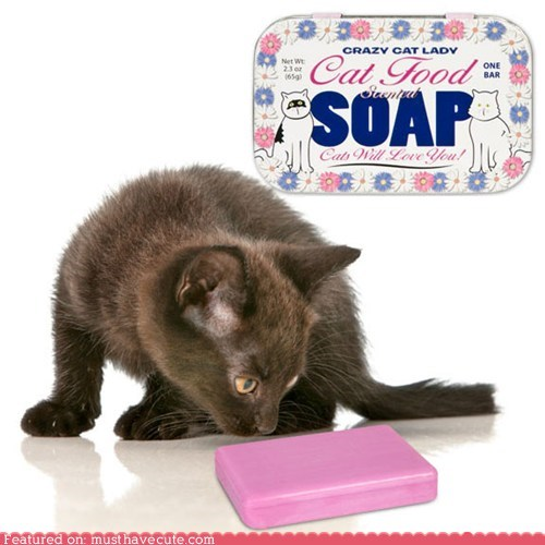 """Crazy Cat Lady"" Cat Food Scented Soap"
