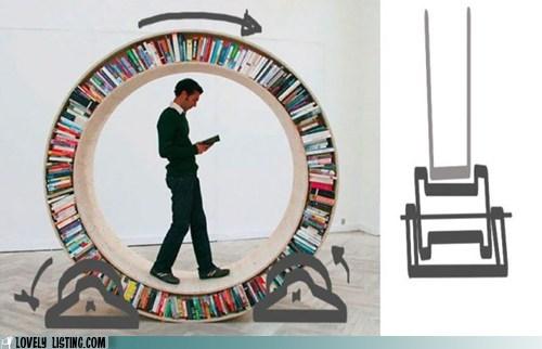 bookcase,books,chelves,hamster,walk,wheel