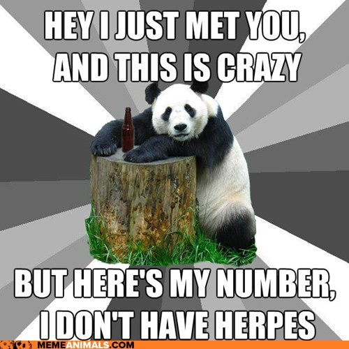 call me maybe,carly rae jepsen,flirting,Hall of Fame,herpes,lyrics,Memes,panda,Pickup Line Panda,pickup lines,Songs
