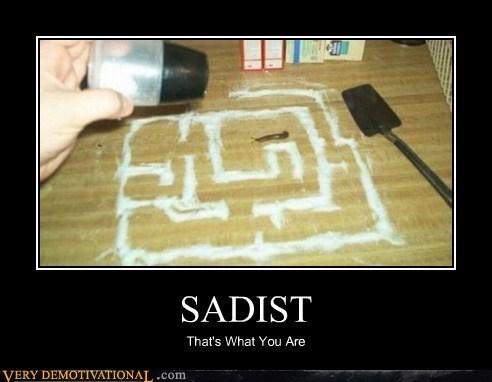 Mean People,sadist,salt,slug