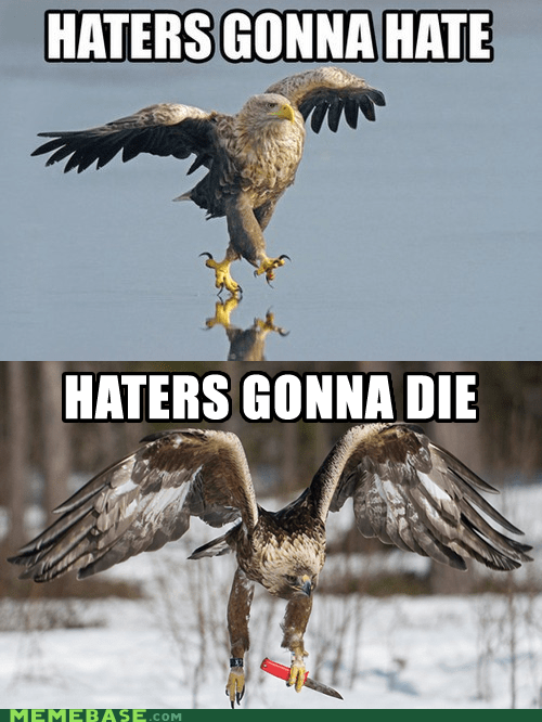 die,eagle,evolution,haters,haters gonna hate,hawk