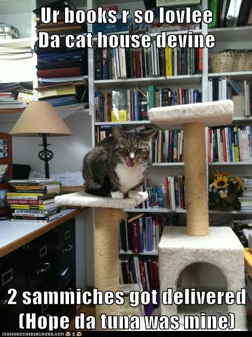 Ur books r so lovlee                            Da cat house devine  2 sammiches got delivered (Hope da tuna was mine)