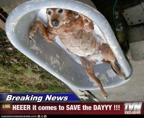 Breaking News - HEEER it comes to SAVE the DAYYY !!!