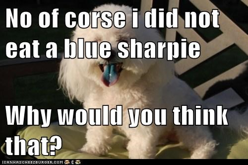 No of corse i did not eat a blue sharpie  Why would you think that?