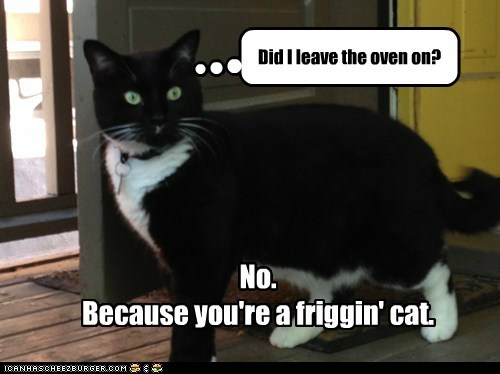 No.  Because you're a friggin' cat.