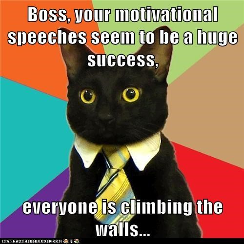 Boss, your motivational speeches seem to be a huge success,  everyone is climbing the walls...