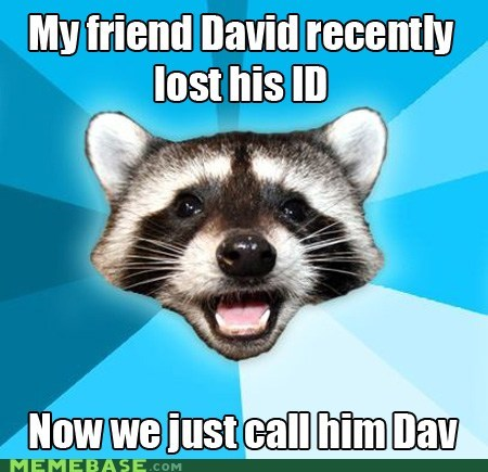 Lame Pun Coon: I Can't Let You Lose That, Dav