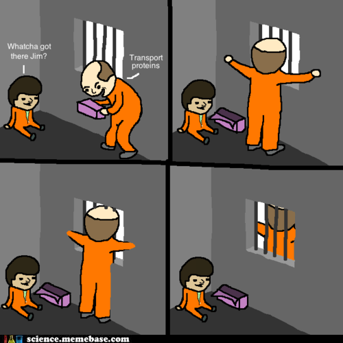 Things You Learn in Prison