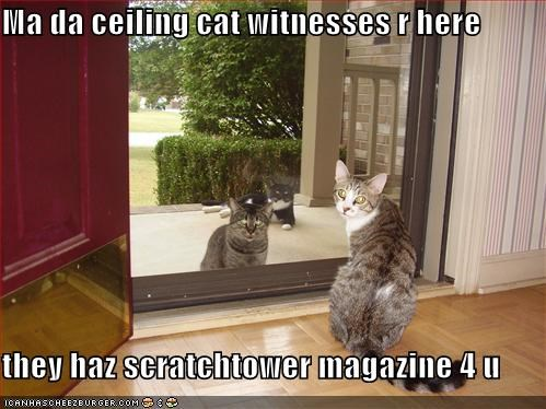 Ma da ceiling cat witnesses r here  they haz scratchtower magazine 4 u
