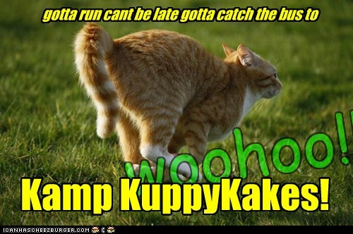gotta run gotta catch the bus to  Kamp KuppyKakes!