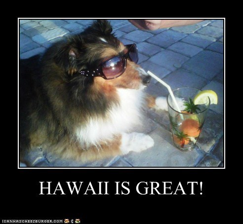 HAWAII IS GREAT!