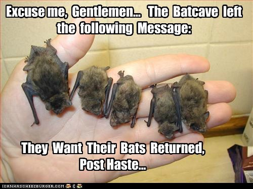 Never Steal From the Batcave