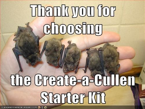 Thank you for choosing  the Create-a-Cullen Starter Kit