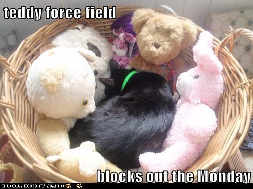 teddy force field  blocks out the Monday
