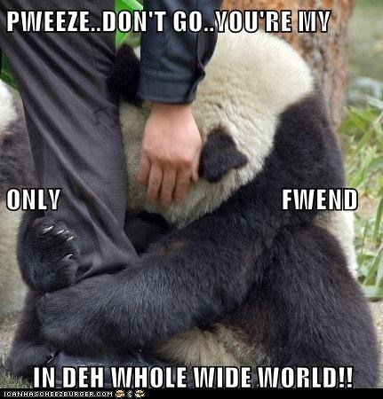 PWEEZE..DON'T GO..YOU'RE MY ONLY                                         FWEND IN DEH WHOLE WIDE WORLD!!