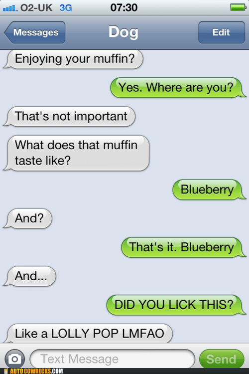 AutocoWrecks,blueberry,g rated,licked,muffin,not important,texts from dog