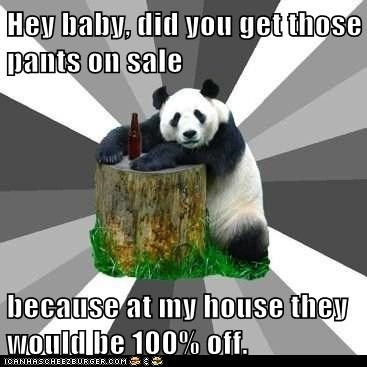 Pickup Line Panda: Maybe 50 Percent Depending on How Drunk I Am