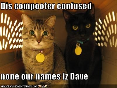Dis compooter confused  none our names iz Dave