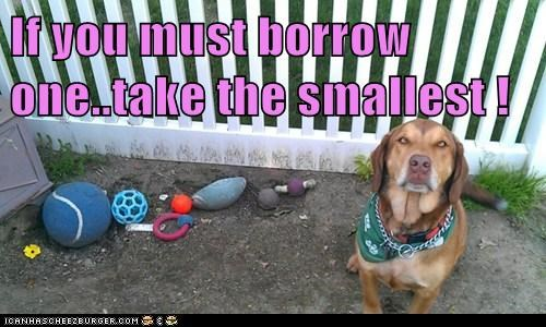 If you must borrow one..take the smallest !