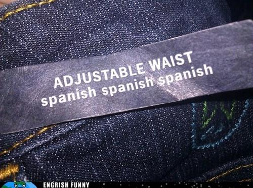 adjustable waist,clothes,jeans,jock strap,pants,waistband